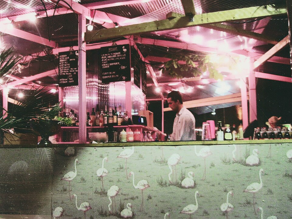 Bar Flamingo
